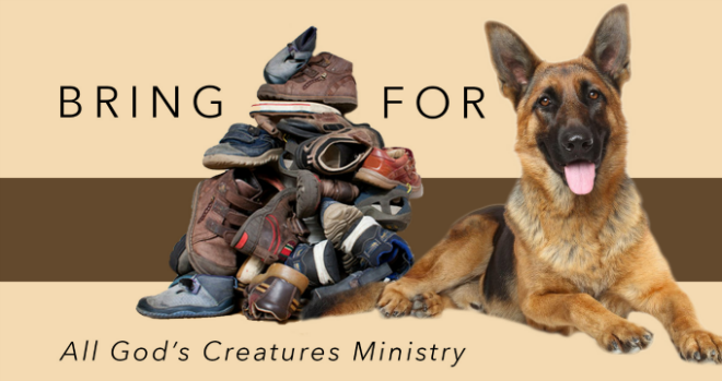 All God's Creatures Shoe Collection