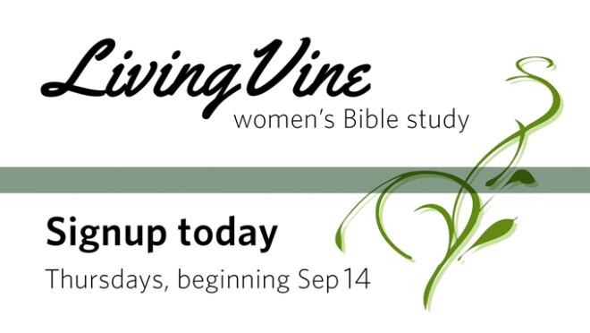 9:15am Living Vine Women's Bible Study