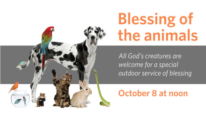 12pm Blessing of the Animals
