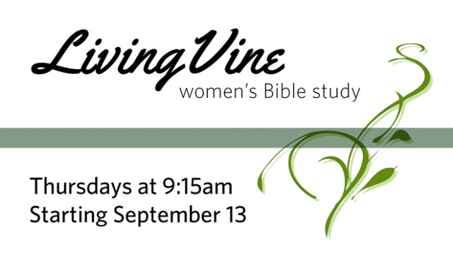 Living Vine Women's Bible Study