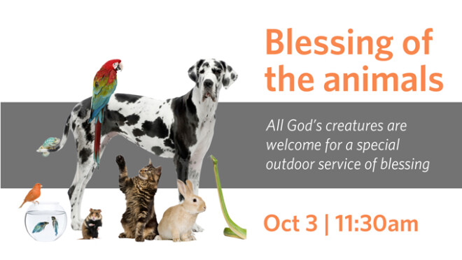 11:30am Blessing of the Animals
